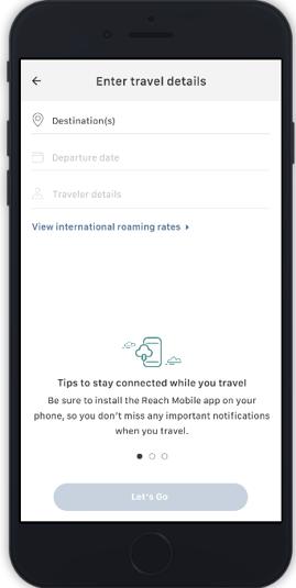IR travel details